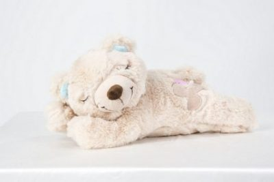 Afp Little Buddy warm Bear voor puppys
